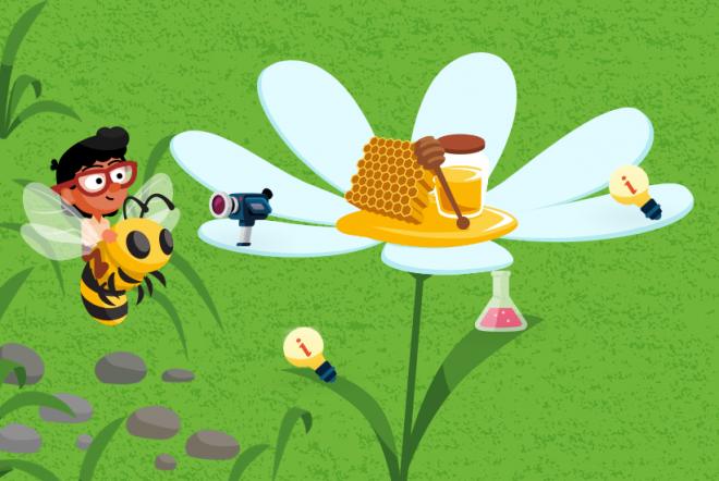 Leer alles over wilde bijen